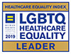 LGBT Healthcare Equality logo