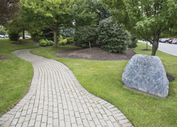 Healing Garden at Millard Fillmore Suburban Hospital
