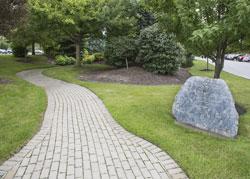 Healing Garden at Millard Fillmore Suburban Hospital